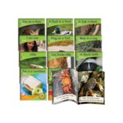Junior Learning Blend Readers Non-Fiction Learning Set 1